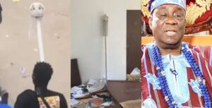 oba of lagos - Oba of Lagos Staff of Office reportedly recovered Video scaled 1 300x153 - OBA OF LAGOS And The Oba Staff Of Office Palaver: OPINION oba of lagos - Oba of Lagos Staff of Office reportedly recovered Video scaled 1 300x153 - OBA OF LAGOS And The Oba Staff Of Office Palaver: OPINION